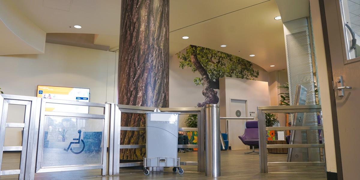 aw-pc-fitnessCenter-tree-2-0718
