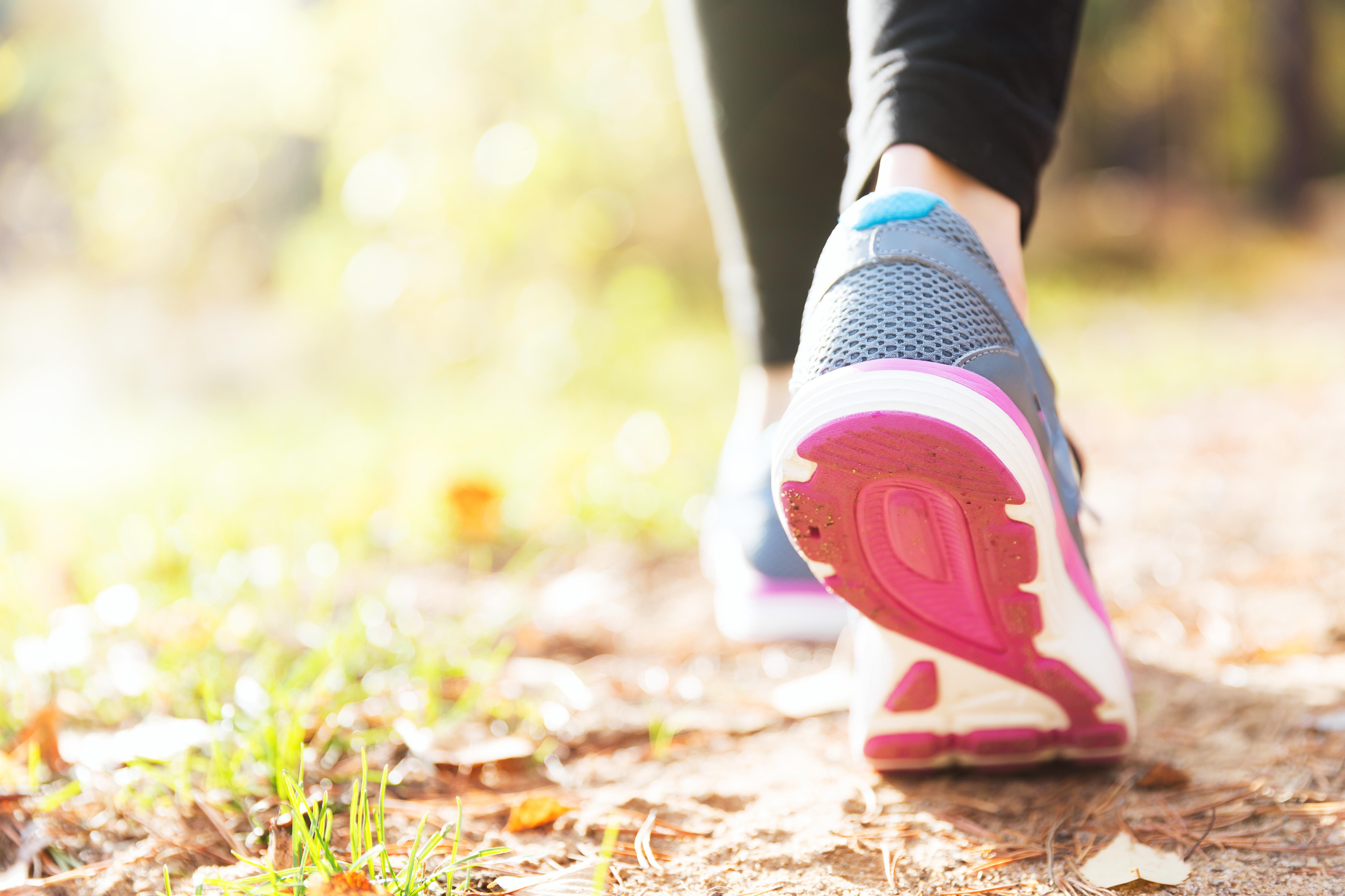 Functional Fitness, Active Wellness, Fitness Center Mangement